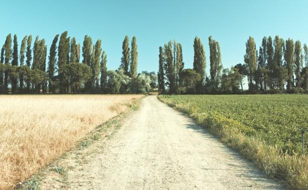 campos-castilla